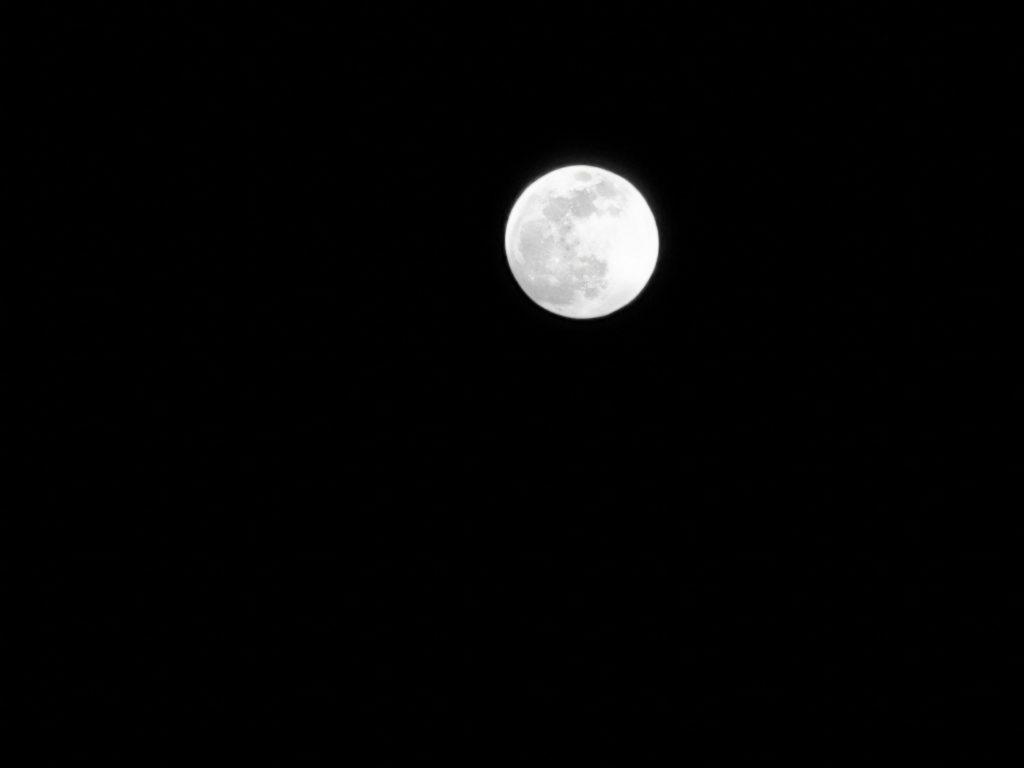 p30 pro luna